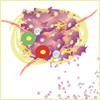 Microambiente y exosomas tumorales, aliados en los procesos de metástasis
