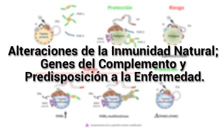 Alteraciones de la Inmunidad Natural; Genes del Complemento y Predisposición a la Enfermedad.