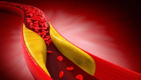 Las células cancerígenas también controlan el colesterol