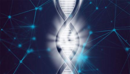 Redescubriendo la mutación somática