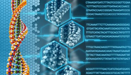 ¿Cuánto nos queda aún por conocer del Genoma Humano?
