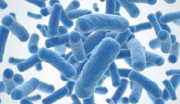 Informe Anticipando sobre Microbioma