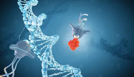 Nanomedicina, abordajes más precisos, eficaces y personalizados