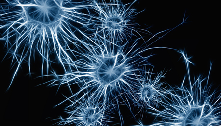 La reprogramación celular podría mejorar la movilidad en ratones con Parkinson