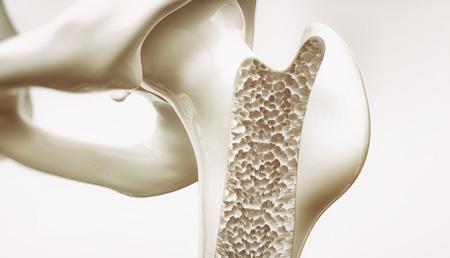Desarrollan un método que podría crear materiales capaces de regenerar tejidos