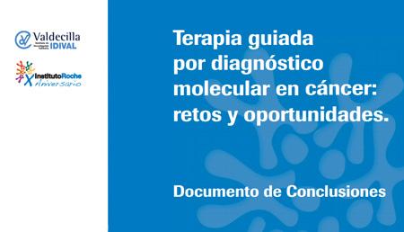 Terapia guiada por diagnóstico molecular en cáncer: retos y oportunidades. Documento de conclusiones.